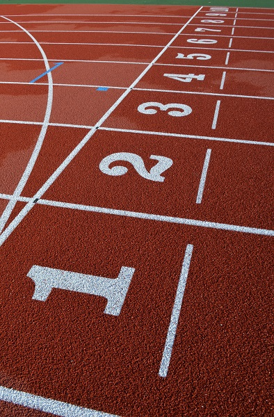 Exeter Harriers - Lanes